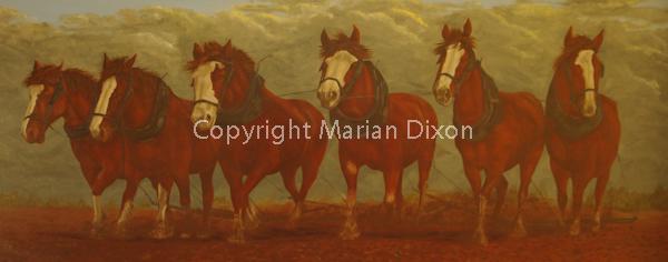 Team of six draft horses