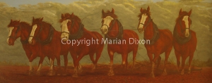 Team of six draft horses