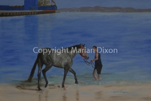 Race Horse on Kwinana Beach with Owner