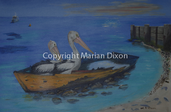 Two pelicans in a derelict boat in shallow water