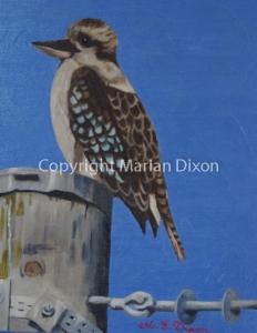 Bird on a telegraph pole