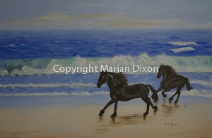 Two Friesian horses galloping on beach