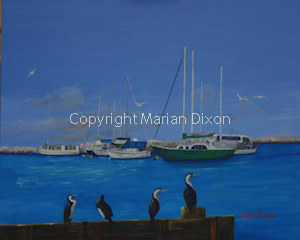 Boats in Mangles Bay with cormorants in foreground