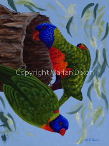 Two Rainbow Lorikeets at nest hole