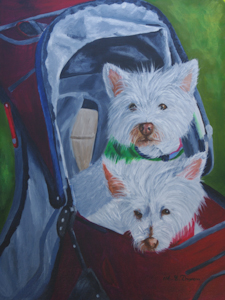 Two West Highland white in a pram